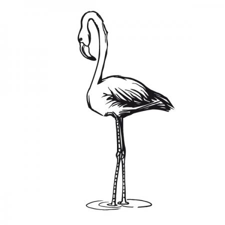 Flamingo - Wand Tattoo